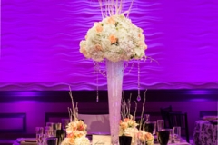 Reception , Purple , Lighting , Lombardos , Boston , JD Designs , Boston Wedding , Lea St Germain Photography , barrys flowers , rentals unlimited , black and white
