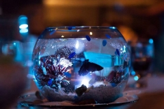 fish , centerpiece , beach , jd designs , woods photodesign , ocean, seaglass , salisbury , music hall