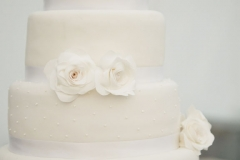 wedding cake , museum , decordova , art , modern , romantic , library , liz linder photography , boston , boston wedding , cakeology