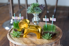 lea st germain photography, august and osceola, whimsical, wood, decor, green, pink, succulent, jddesigns, stylist, styled, urban, chic, gold, greenery, elephant, reserve event rental